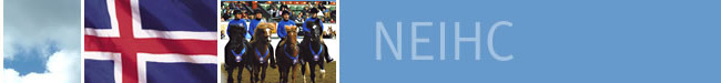 About the Northeast Icelandic Horse Club